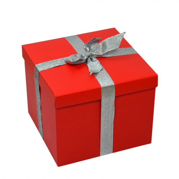 Geschenk-Karton mit Schleife, Größe L, rot